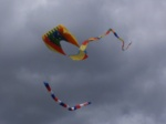 Kite Flying 012